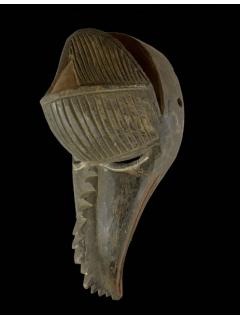 Baga [Гвинея-Биссау], 36 см