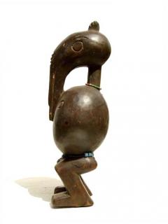 Senufo Hornbill [Кот-д'Ивуар], 35 см