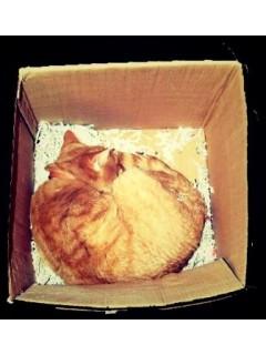 Упаковка почтовых посылок