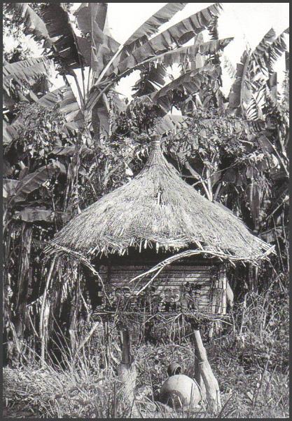 Mambila Tadep Suaga. Фотография 1936 (История искусства в Африке)