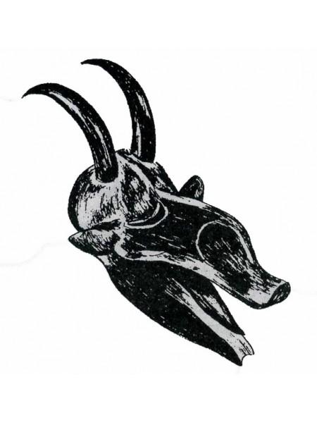 Бык: сила и выносливость. Символы Африки