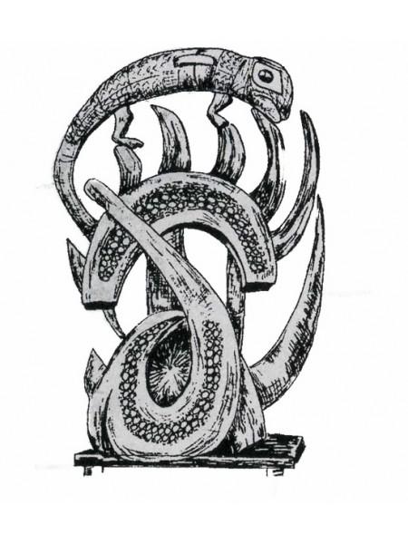 Хамелеон: мудрость и осторожность. Символы Африки