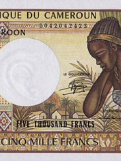 Банкнота в 5000 камерунских франков